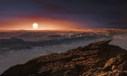 A rocky super-Earth discovered in orbit around a nearby cool star may harbour life