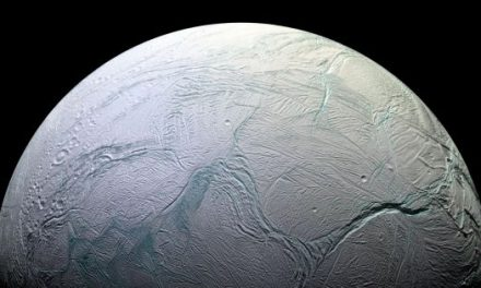 NASA May Have Found Alien Life in Our Own Solar System