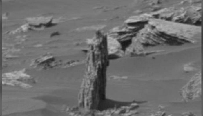Tree stump spotted on Mars, Possible existence of vegetation on Red Planet: Alien hunters