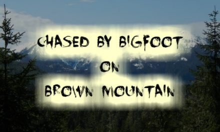 Chased by Bigfoot on Brown Mountain
