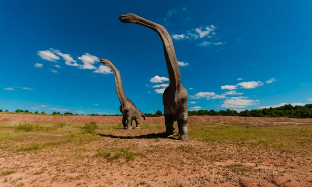 How the plesiosaurs were able to swim with just flippers