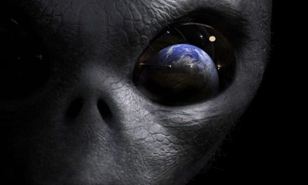 Should we be seeking out aliens on Earth?