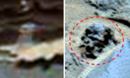 World's 'top UFO hunter' returns after finding 'alien skull' and 'spider' on Mars