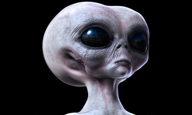 What Would Aliens Really Look Like? Here Are Some Hints From Evolution