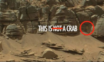 NASA TOTALLY FOUND AN ALIEN CRAB ON MARS AND DIDN'T TELL ANYBODY