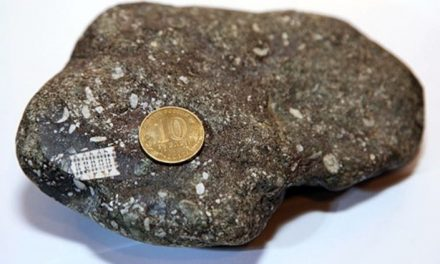 Researchers Find A 250 Million Year Old Microchip Embedded In Stone