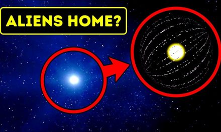 Scientists Think This Weird Star Could be Aliens' Home… Really?