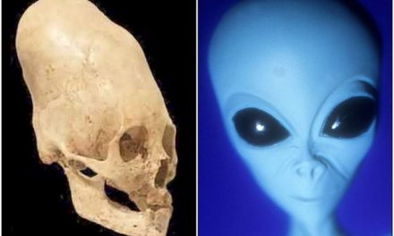 Ancient Aliens: The Visitors (Episode 3)