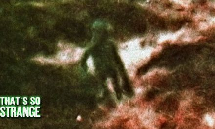 The Ilkley Moor Alien | Real Alien Caught On Camera?