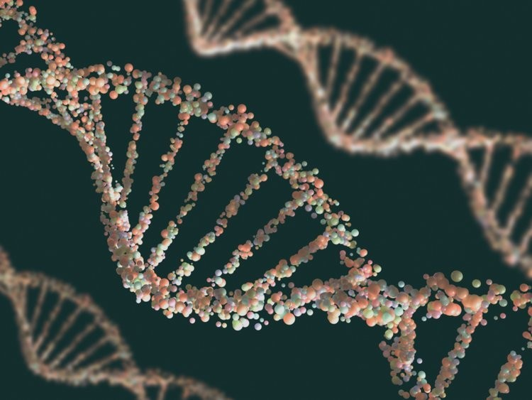 NASA helped make a synthetic DNA structure that may shed light on what alien DNA could look like