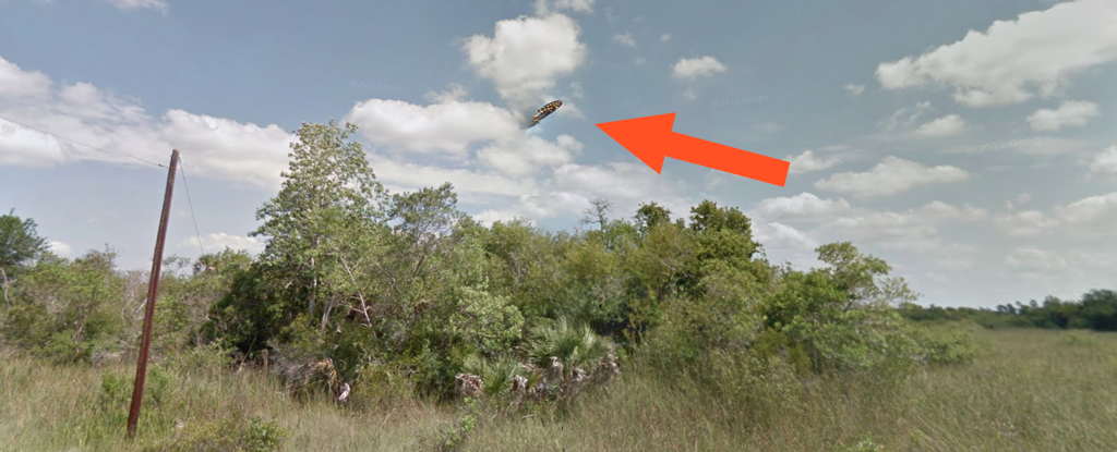 Let's Take a Closer Look at That 'Mysterious UFO Sighting' Above a Florida Swamp