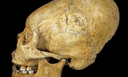 Why Ancient Peruvians Had Elongated Skulls (No, It's Not Aliens)