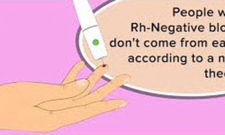 Many People Think That RH Negative Blood Types Come From Aliens – Useful Tips