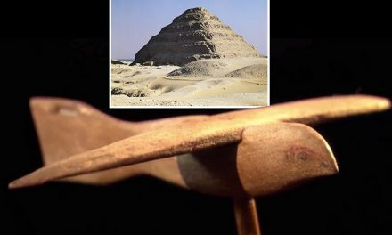 'Alien glider' found in ancient Egyptian tomb 'is proof extra-terrestrials visited Earth', UFO enthusiast claims