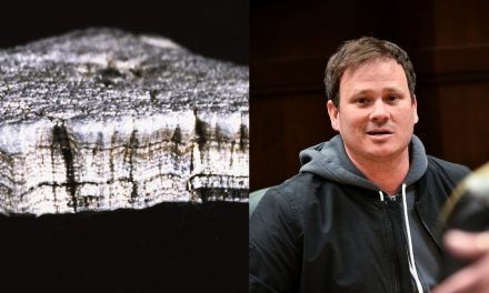 UFO Researcher Explains Why She Sold 'Exotic' Metal to Tom DeLonge