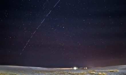 Reports of dozens of UFOs turn out to be SpaceX satellites | CTV News