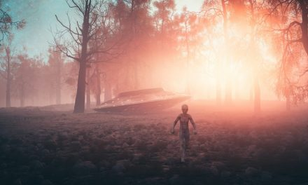 Grey Aliens: Abduction Experts, Encounter Intent Unknown | Gaia