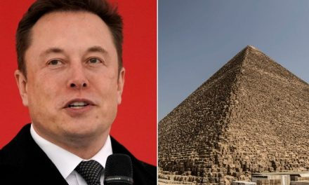 "Elon Musk Hints Egyptian Pyramids Were ""Obviously"" Built By Aliens – UFOholic.com"