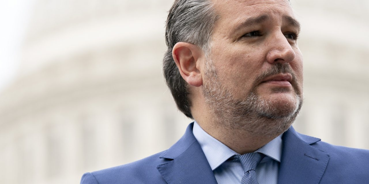 Ted Cruz Praises American Patriots for Standing Up to 'Space Aliens'
